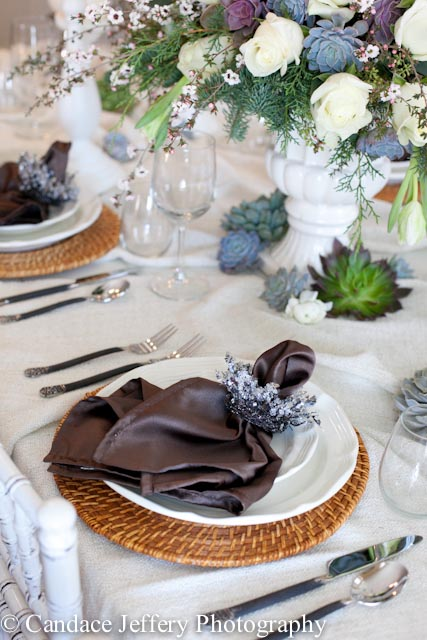 Succulents on table setting, silk dark platinum cloth napkin on white dinner plate