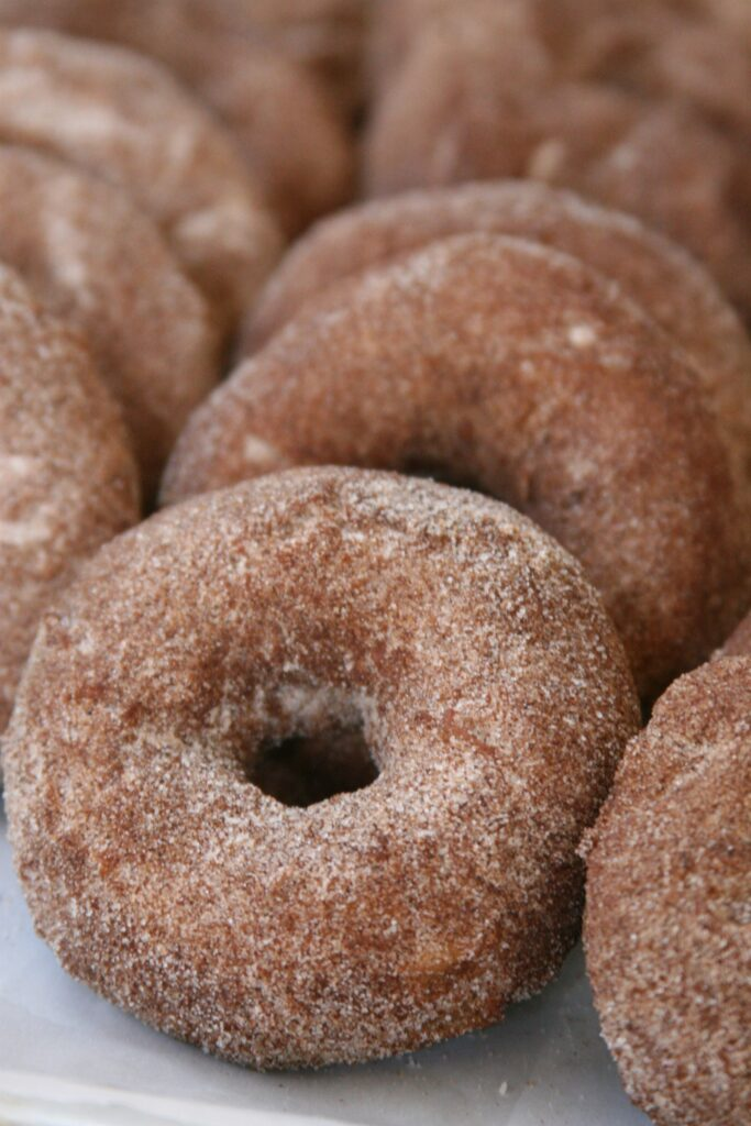 Apple Cider donuts sprinkled with cinnamon sugar mixture lined up against each other on parchment paper