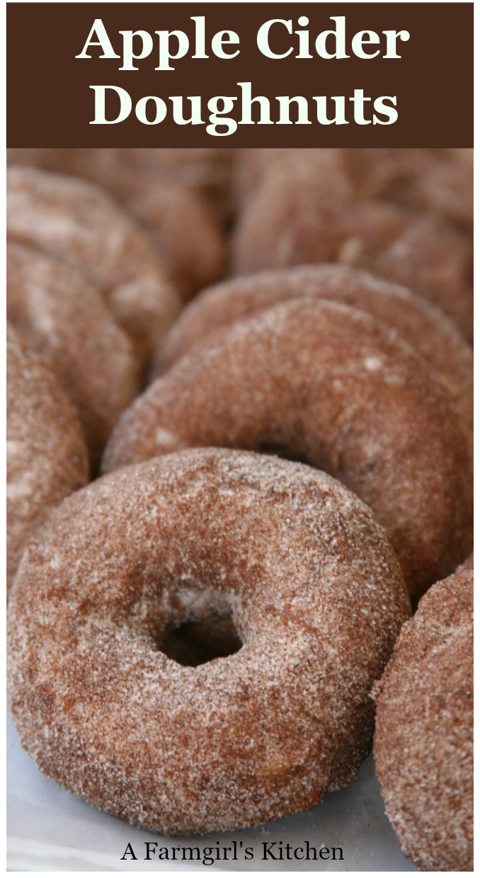 Apple Cider Doughnuts are a cake style doughnut rolled in a cinnamon sugar mixture. They are simple to make and will remind you of fairs and apple orchards. #recipes #easyrecipes #applecider #apples #appleciderdoughnuts #doughnuts #homemade