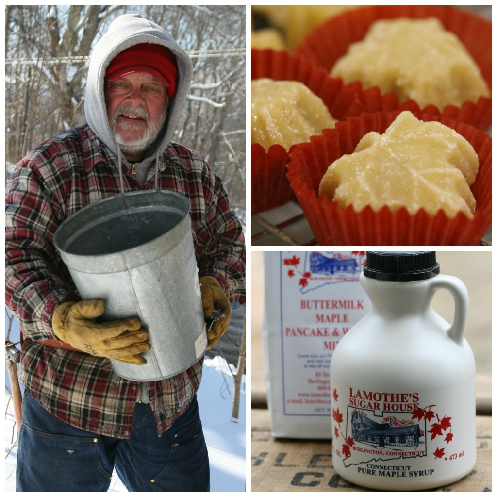 Man collecting maple sap from a galvanized bucket and maple syrup in plastic containers