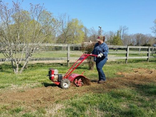 girl pushing red color rototiller through vegetable garden