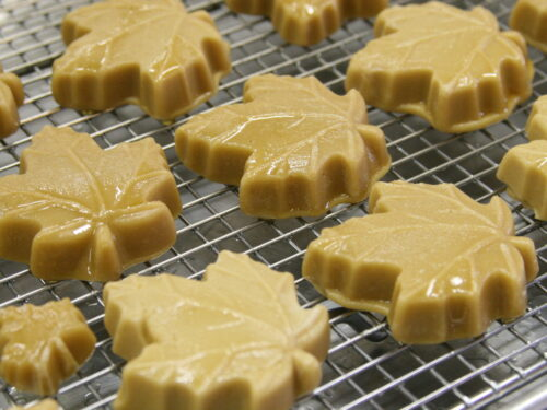Pure maple candies drying on a baking rack