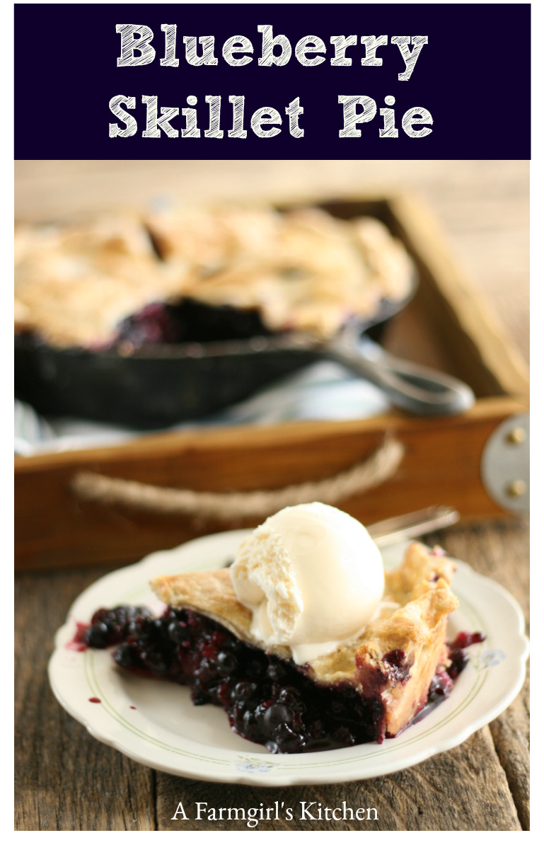 Homemade slice of blueberry pie on a small plate with a big scoop of vanilla ice cream on top and the blueberry pie in a cast iron skillet in the background