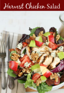 mixed green salad with chunks of apples, blue cheese, red onion slices, grilled chicken, and walnuts