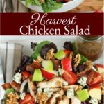 garden salad with chunks of apples, red onion slices, grilled chicken, blue cheese, and walnuts