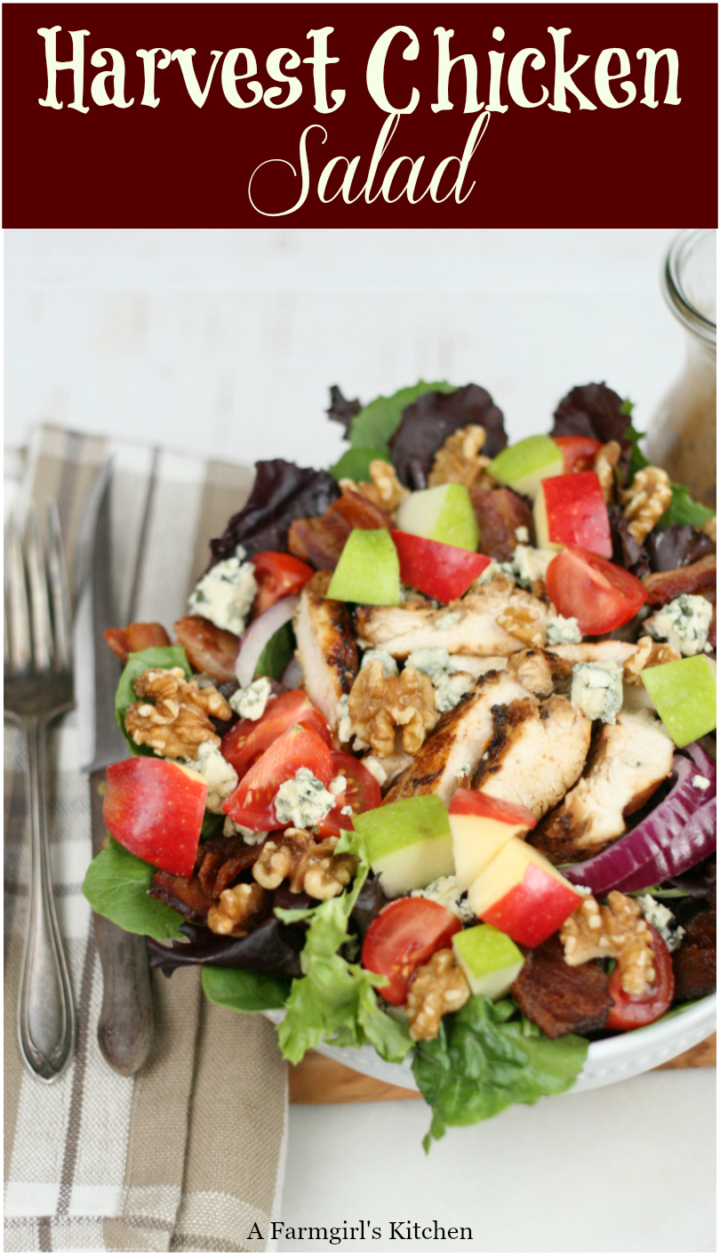 Harvest chicken salad with mixed baby greens, slices of red onions, walnuts, chunks of blue cheese, red and green apples is easy to make and perfect for fall. #recipe #chickensalad #easyrecipes #salad