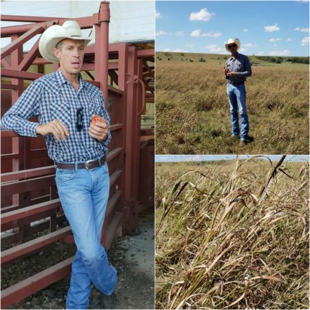 Farmer Matt explaining his cattle ranch operation