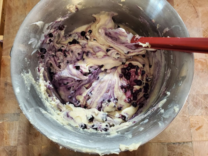 blueberry muffin batter. folding blueberries in with rubber spatula
