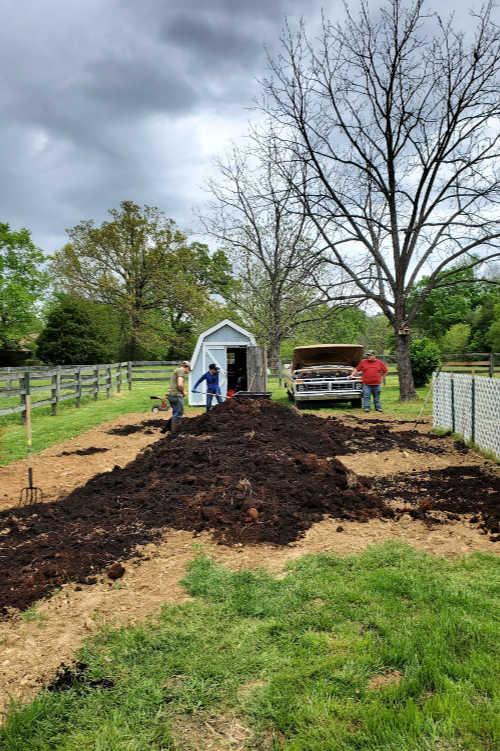 tilling in chicken compost to vegetable garden