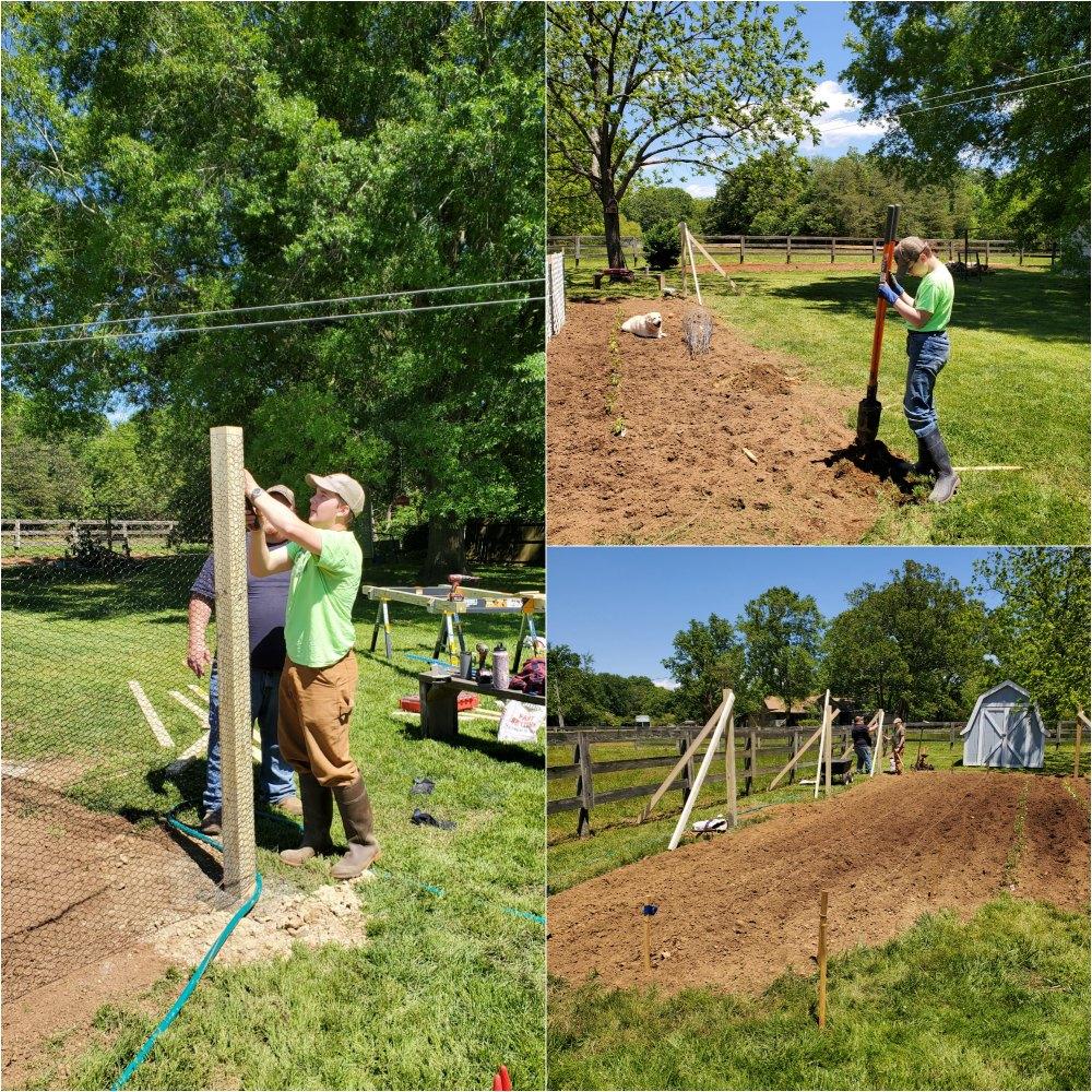 putting up fence around vegetable garden