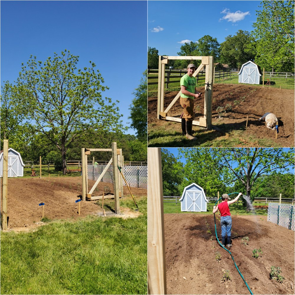 installing a fence around vegetable garden
