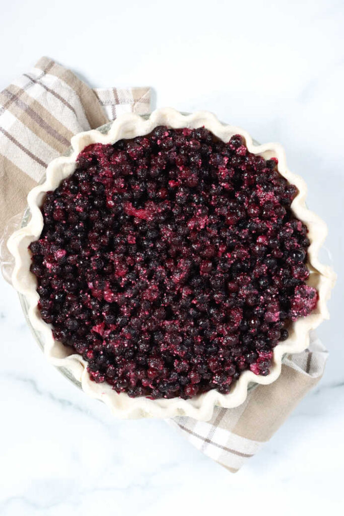 unbaked blueberry pie with wild blueberries, nothing on top. In clear glass pie dish